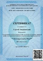 ИКТ компетентность (Андриевский С.Н.)