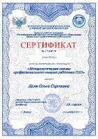 Сертификат методологического семинара(Дели О.С.)