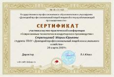 Сертификат (Стрельцова М.Ю.)